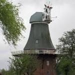 Grüne Zwillingsmühle Greetsiel mit neuer Kappe
