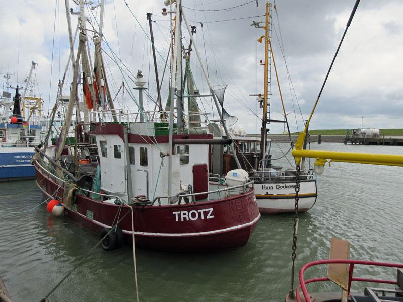 "Krabbenkutter ""Trotz"" im Außenhafen Hooksiel"