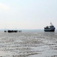 Mellum - Die verbotene Insel. Die Wega II trockengefallen im Watt.
